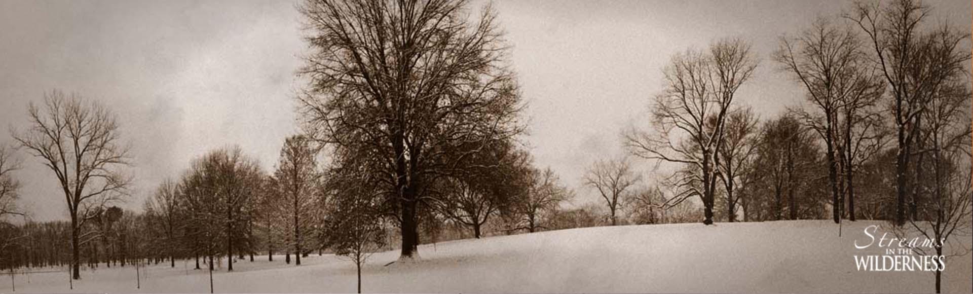 Wilmore Park, St. Louis, MO